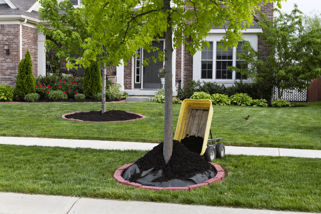 Tree Mulch, Bark Mulch, Landscape Design, Massachusetts, Boston, Worcester, Shrewsbury, Framingham, Hopkinton